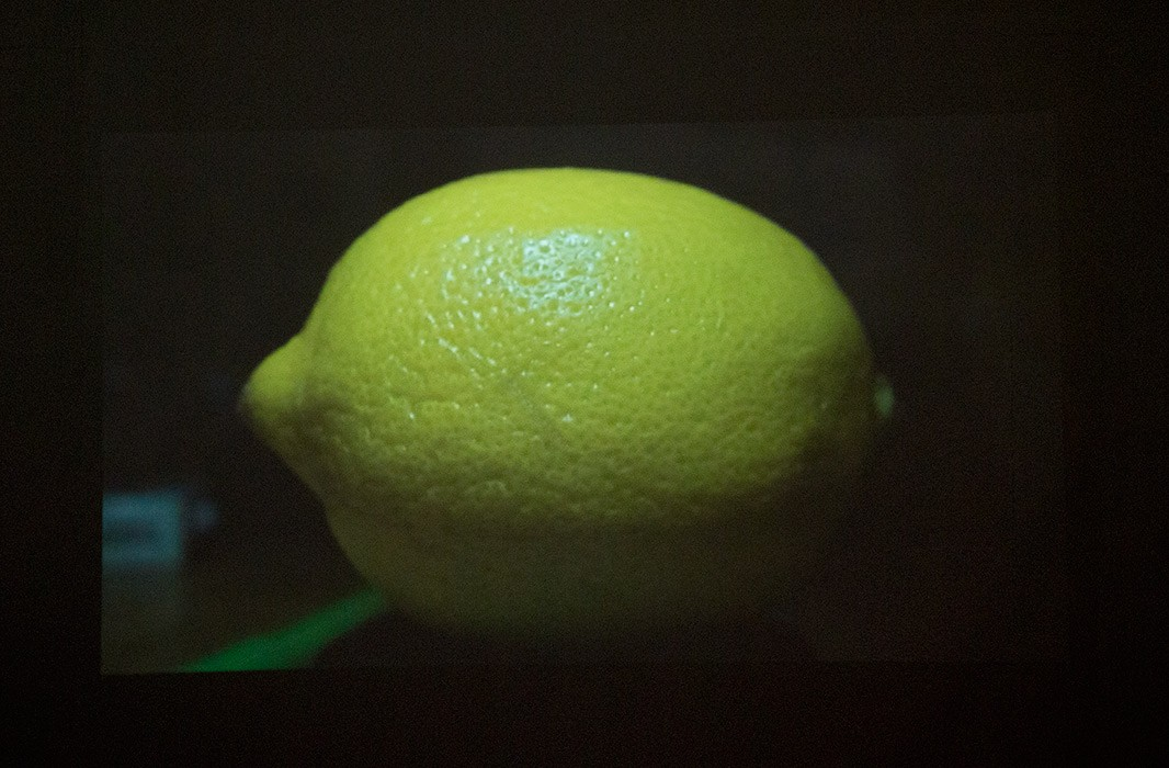 http://jennyhyde.com/files/gimgs/th-35_lemon-phase2-projection.jpg